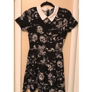 Collared | Floral | Black & White | Dress